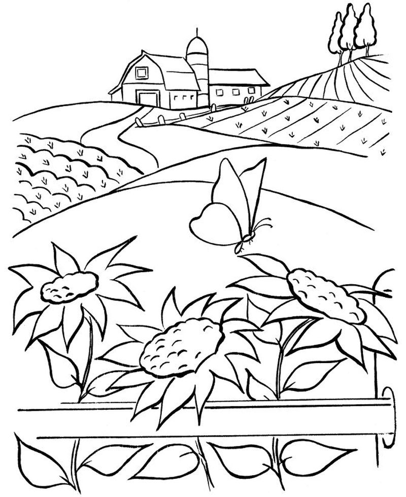 farm coloring book pictures