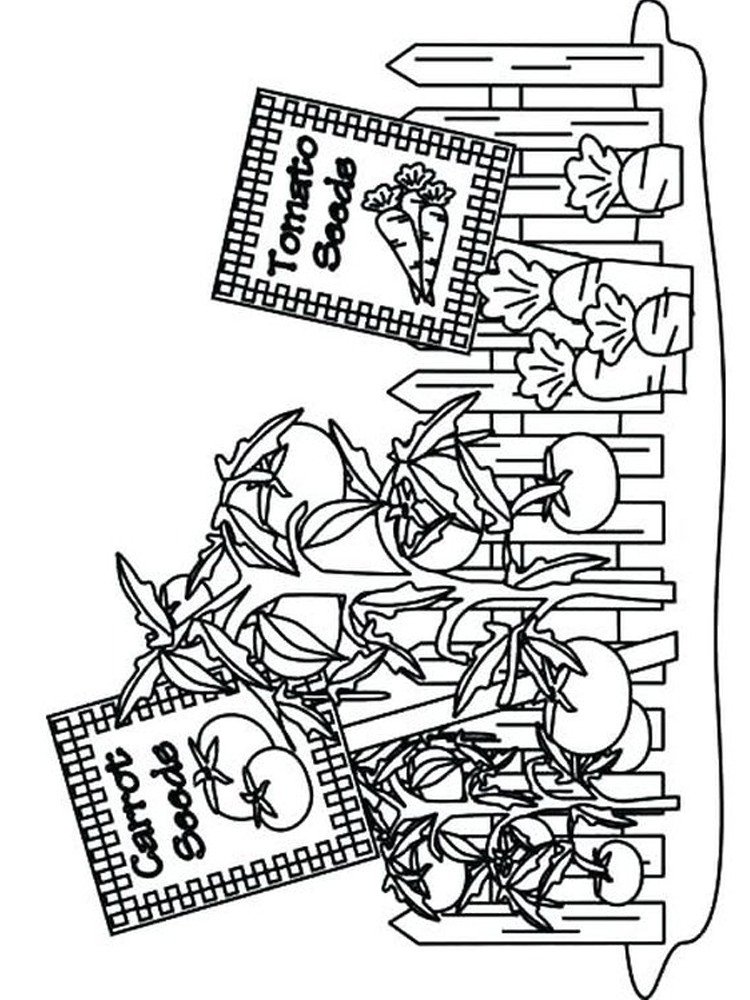 flower garden coloring pages free image
