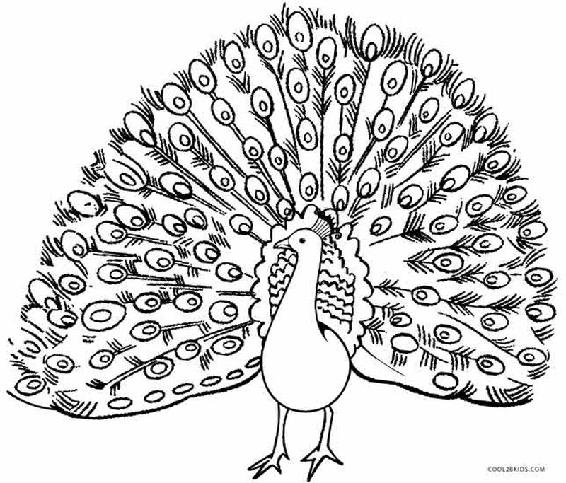 free Beautiful Peacock Coloring Pages