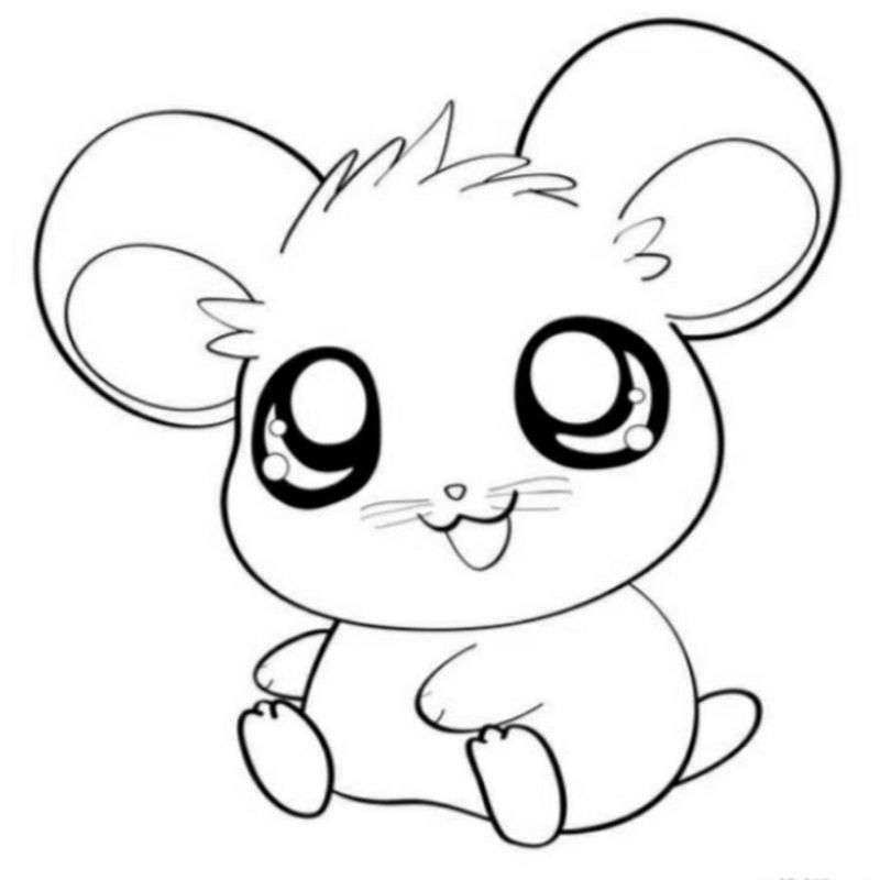 free baby animal coloring pages to print