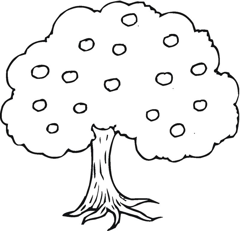 free tree coloring pages for adults