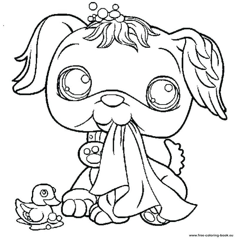 littlest pet shop colouring in pages