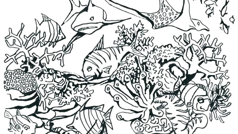 lost ocean coloring pages