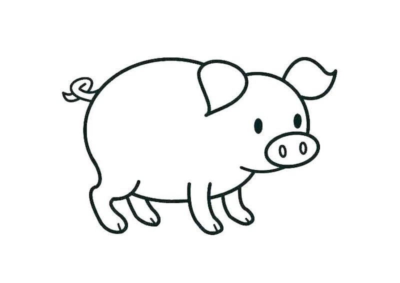 moana and pig coloring pages