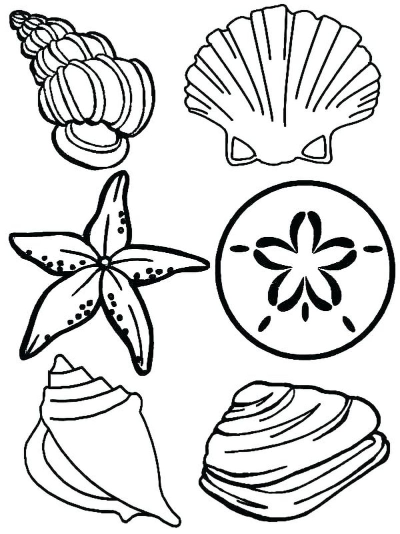 ocean beach coloring pages