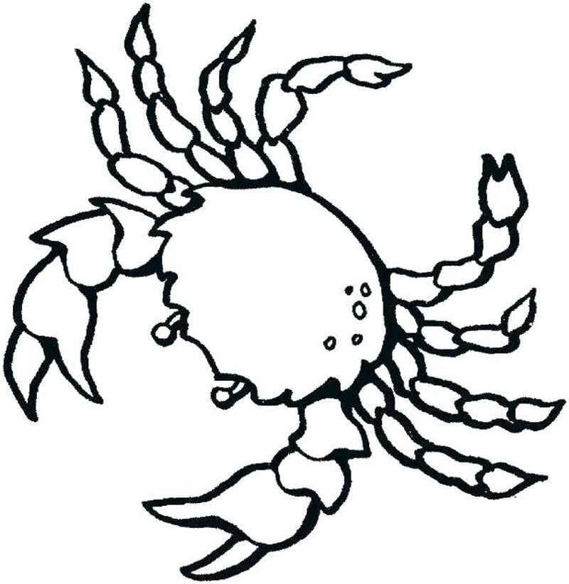 ocean coloring pages easy