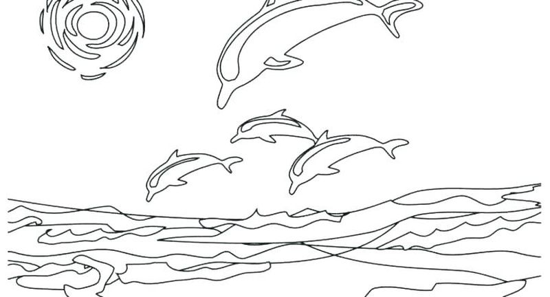 ocean coloring pages pinterest
