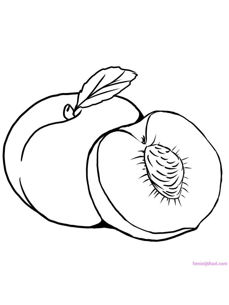 pdf peach coloring page download free