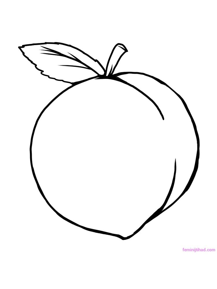 peach coloring pictures pdf free