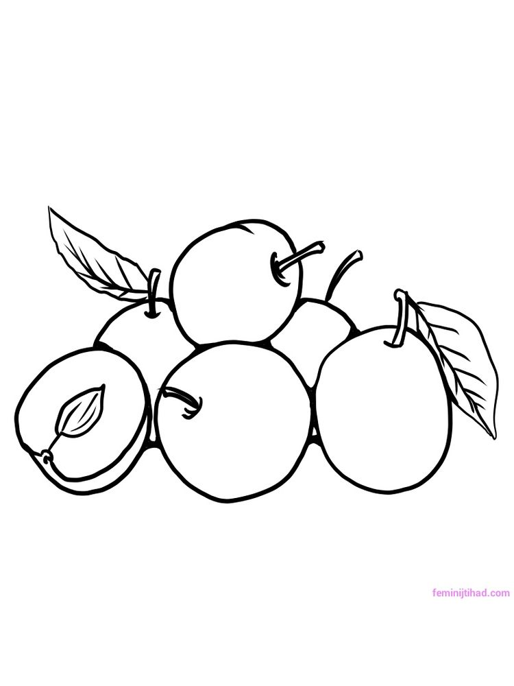 plum for coloring page