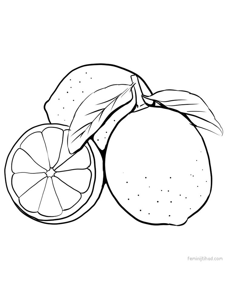 print lime coloring page free
