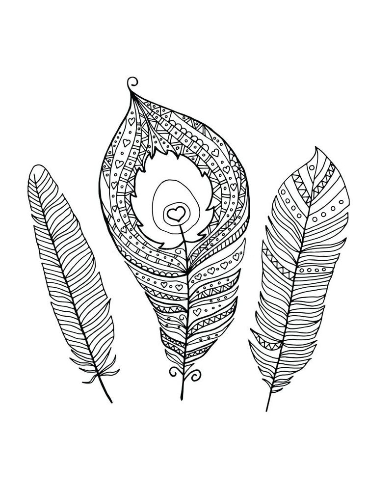 printable feather coloring page 1