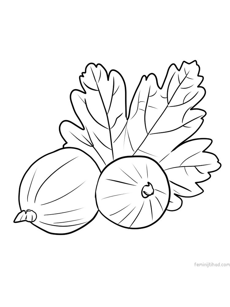 printable gooseberry coloring image free