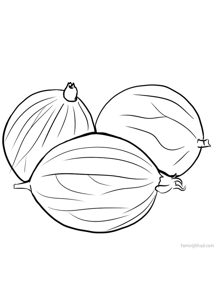 printable gooseberry coloring page free