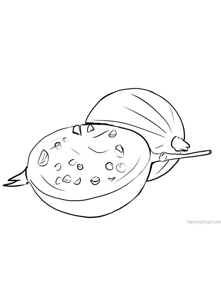 printable gooseberry picture for coloring pictures