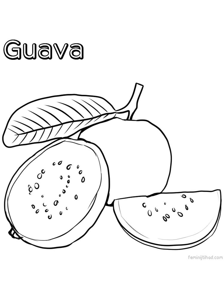 printable guava coloring page free