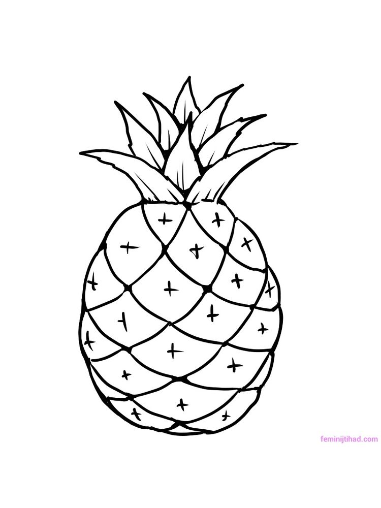 printable pineapple coloring picture print