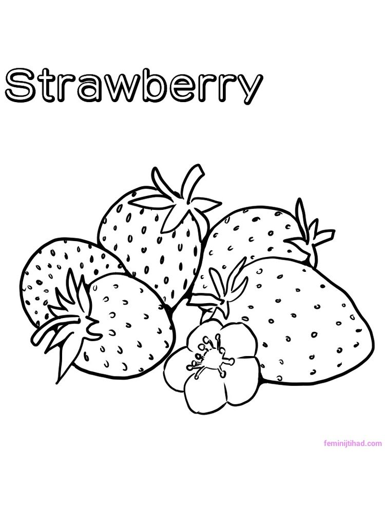 printable strawberry coloring pages free