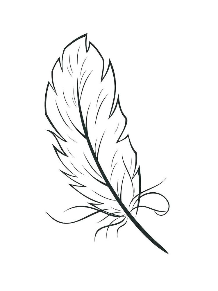printable turkey feather coloring page