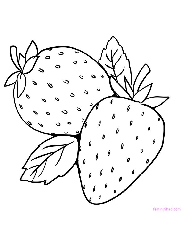strawberry coloring page free