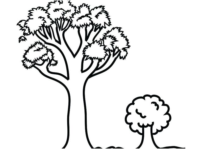 tree coloring pages easy