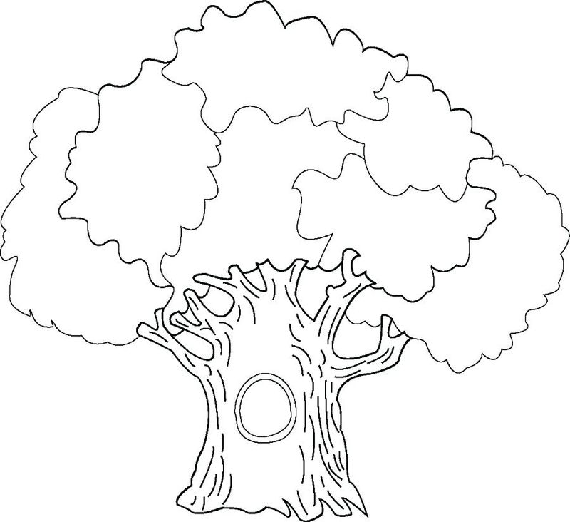 tree coloring pages images
