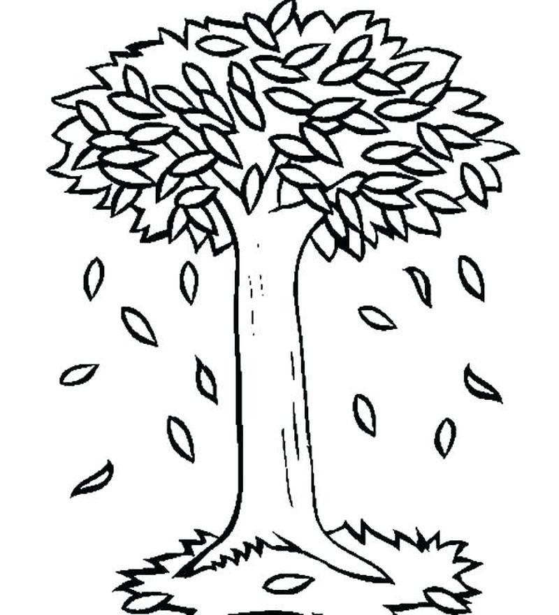 tree coloring pages owl