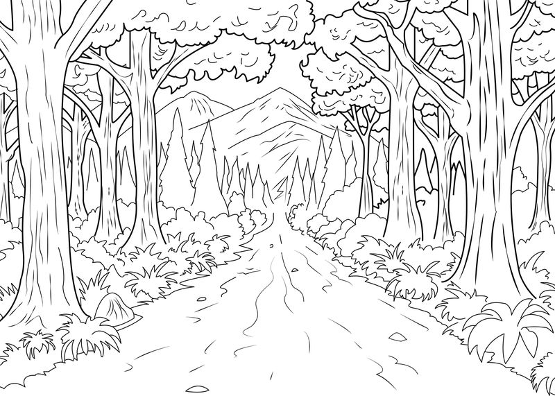 tree colouring pages for adults