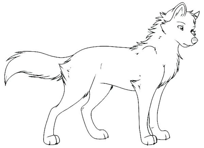 wolf coloring pages anime print