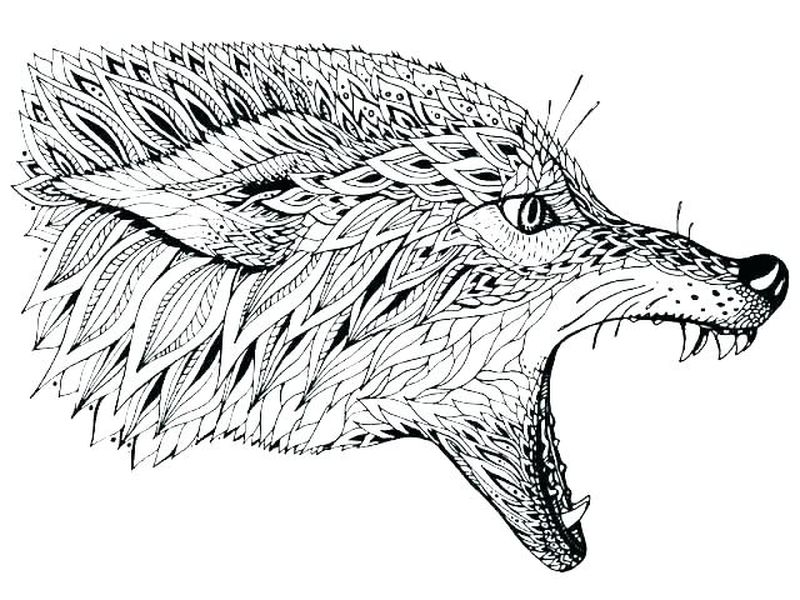 wolf coloring pages for adults print