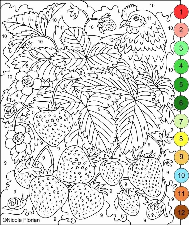 Printable Color By Number Butterfly Coloring Pages