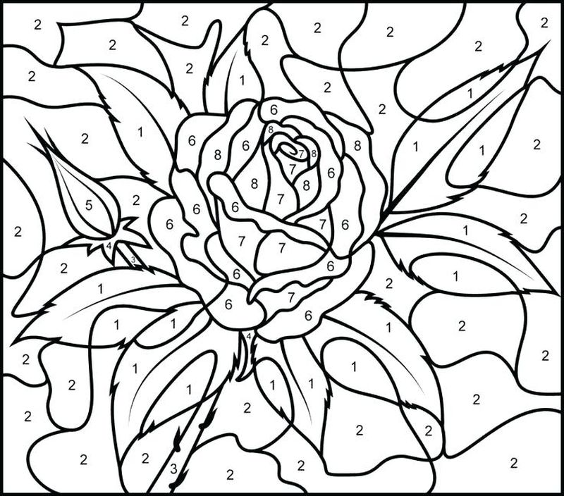 Printable Color By Number Printable Coloring Pages