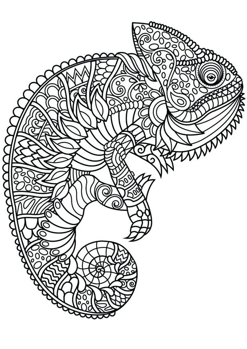 Printable Mandalas For Kids Coloring