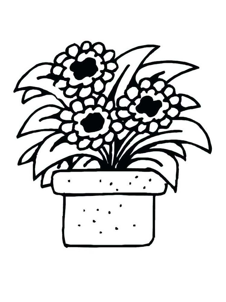 carnivorous plant coloring page printable
