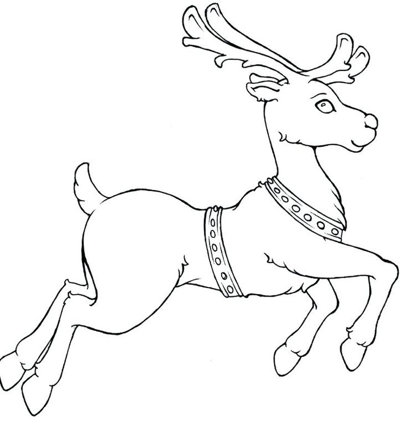 cartoon rudolph coloring pages