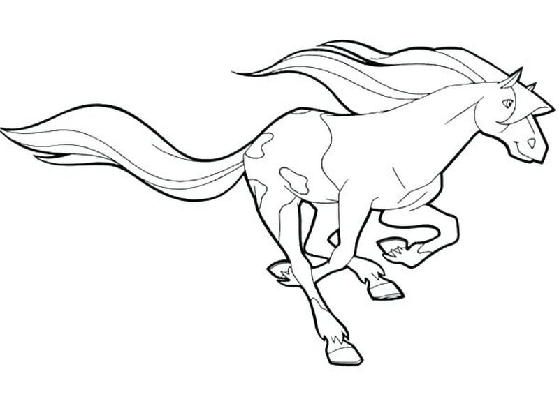coloring pictures of horses to print