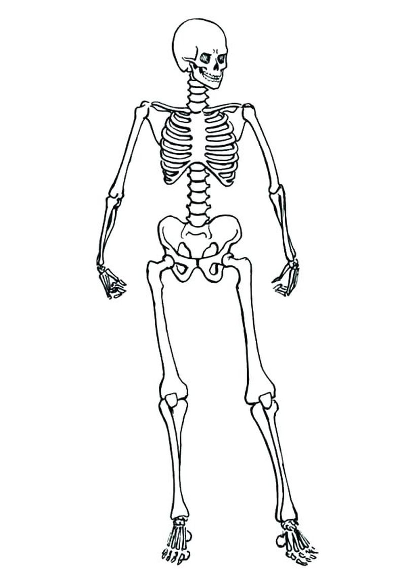 cute anime skeleton coloring pages