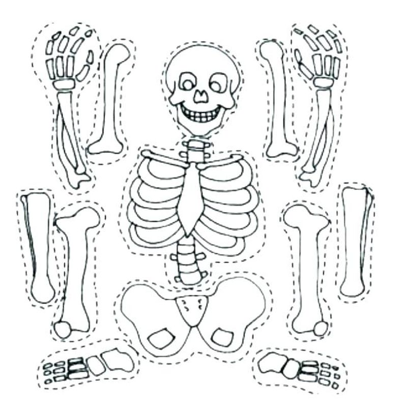 easy coloring pages of skeleton