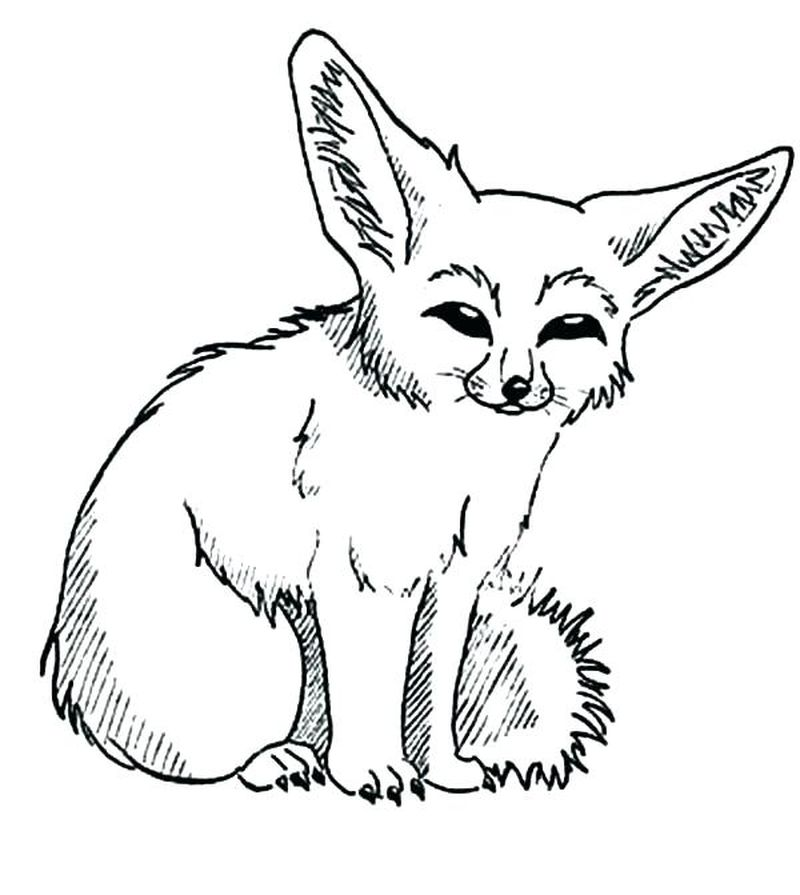 fox PRINTABLE coloring pages