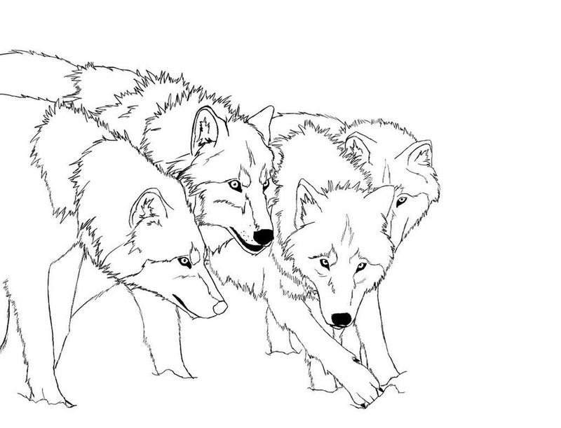 fox coloring pages for kids printable