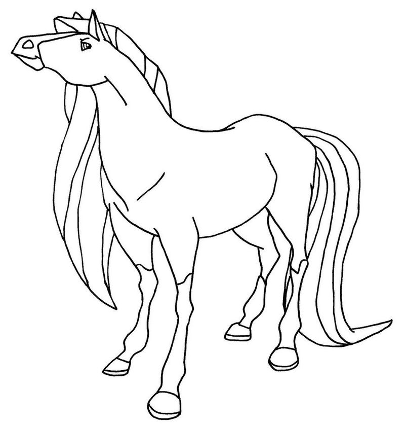 horseland images