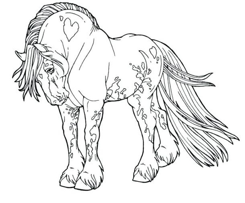 horses color pages printable