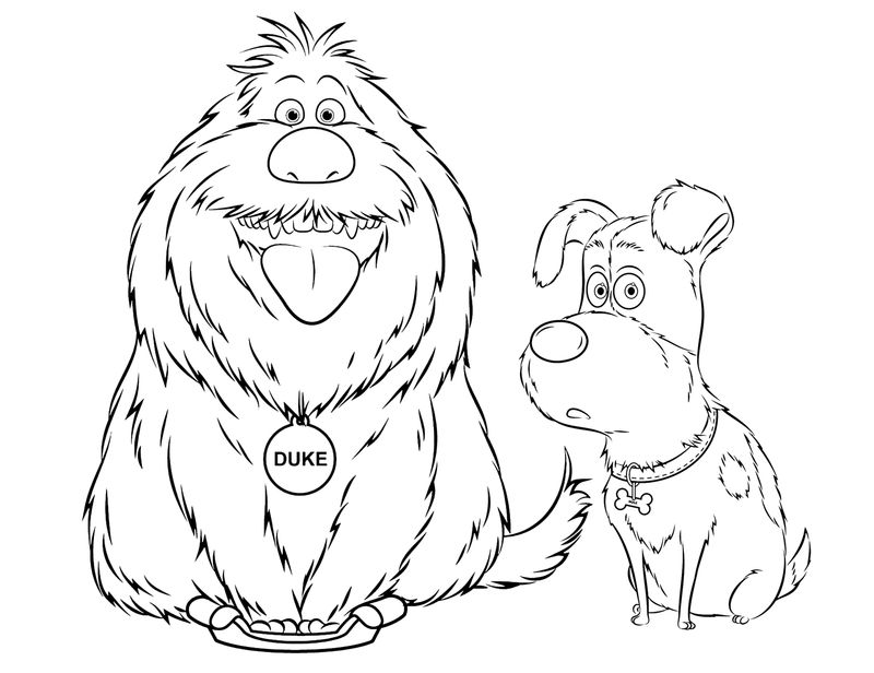 life of pets coloring pages
