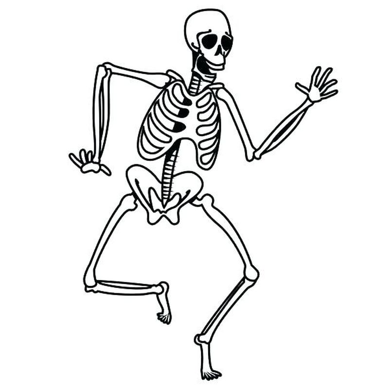 monster high skeleton coloring pages