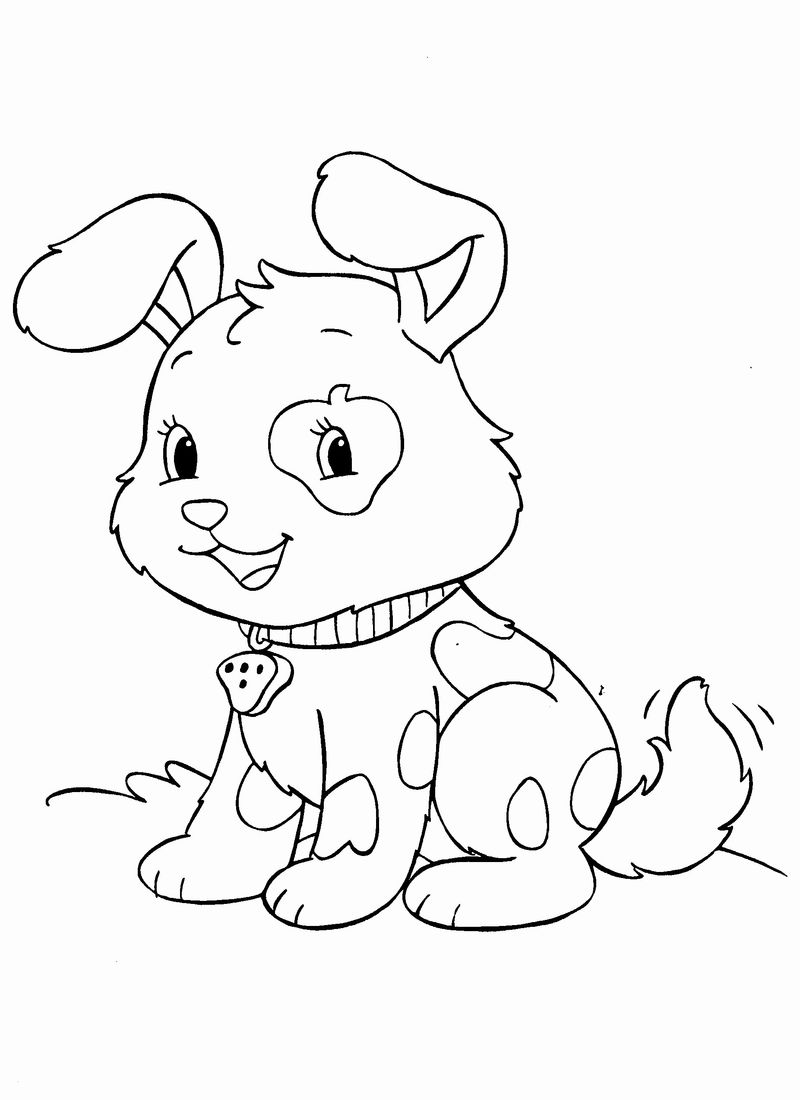 pets pictures to colour Print