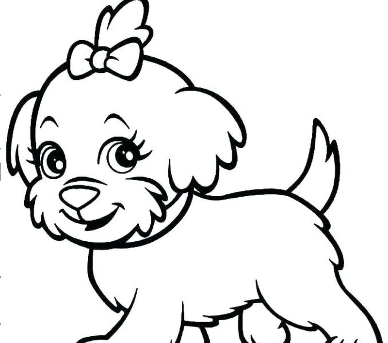 pets pictures to colour