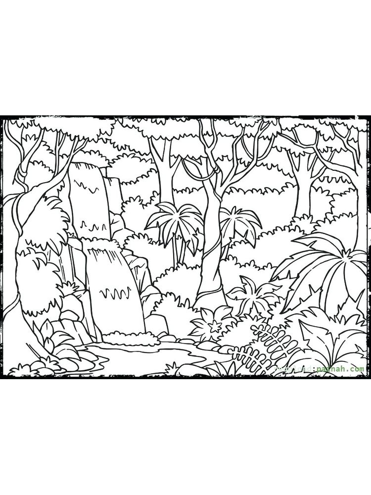 plant cell coloring page printable
