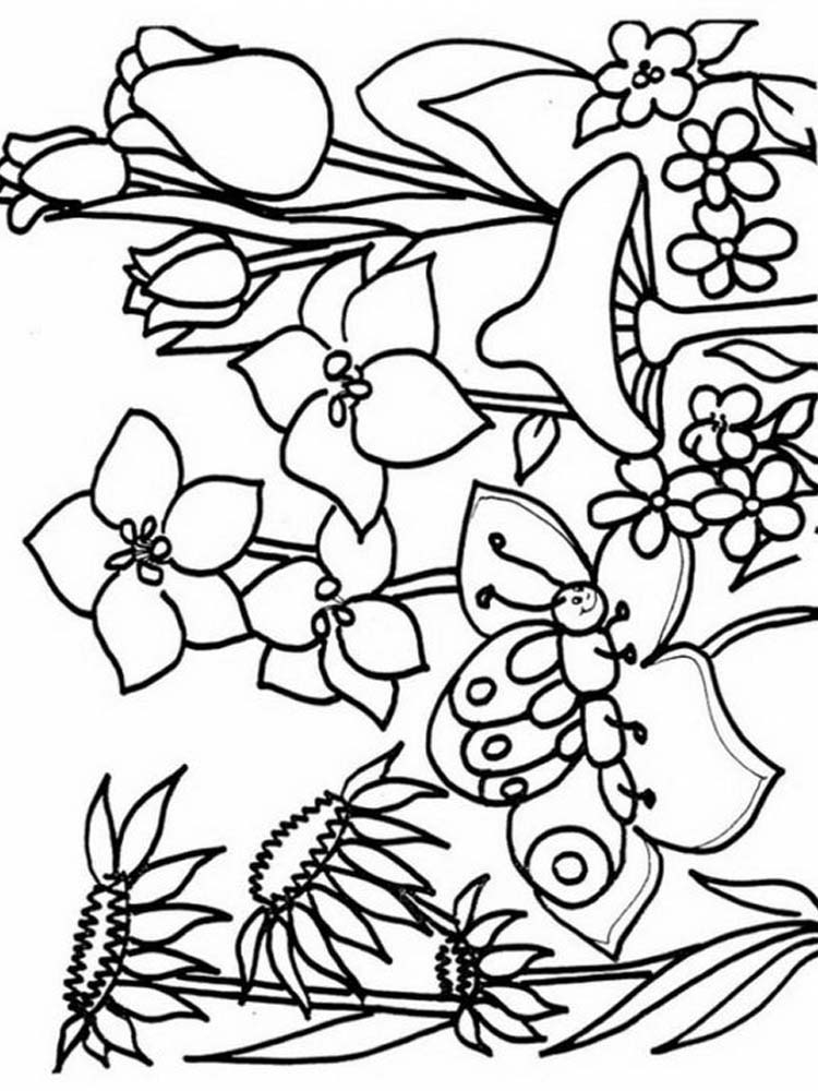 plant coloring pages printable