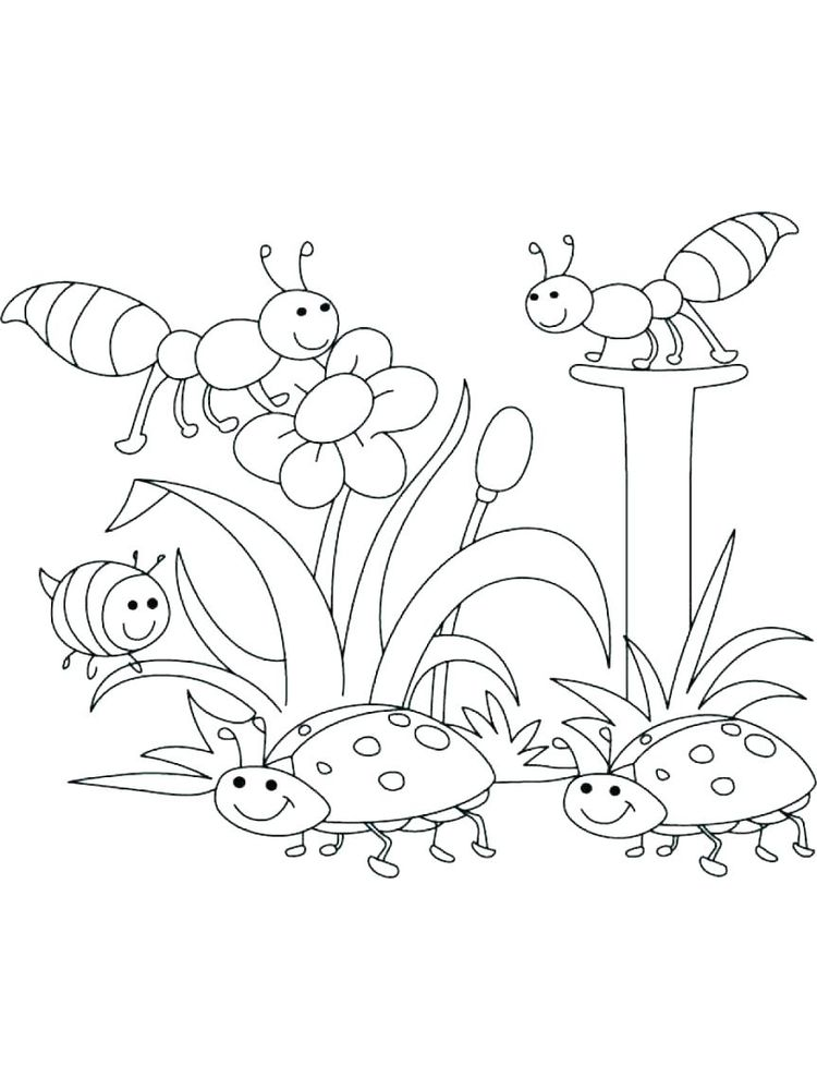 plant coloring pages science printable