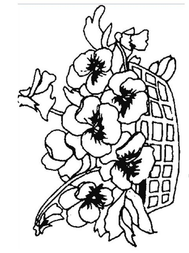 plant colouring page printable